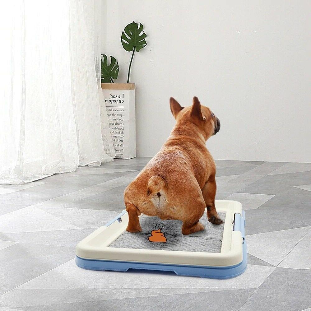 Portable Dog Training Potty Toilet Pad